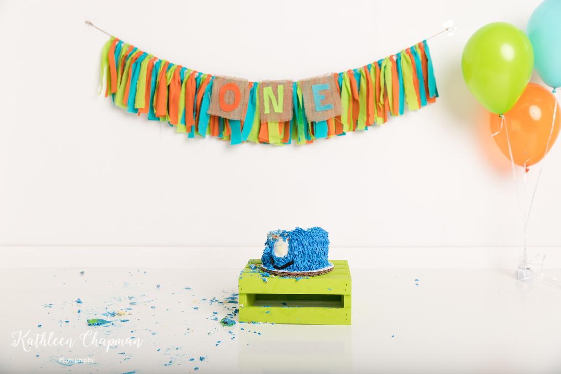 first birthday boy cake smash potsdam ny family photographer