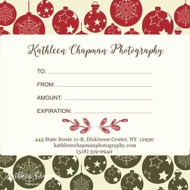 Photo session gift certificate potsdam ny child photographer