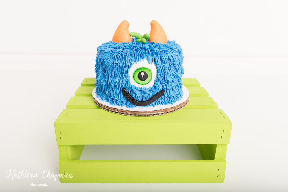 monster cake for cake smash potsdam ny child photographer